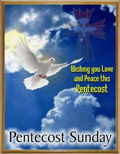 Have a Blessed Pentecost Sunday!   http://www.123greetings.com/events/pentecost/pentecost_sunday_card.html