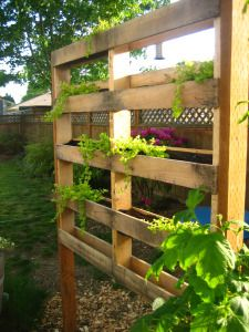 Elegant Project: Pallet Planter