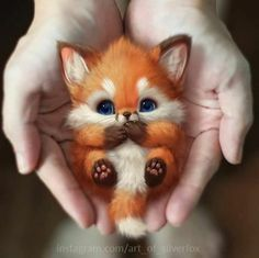 How Artist Decided To Draw Pet And What Happened Next Baby Animals Super Cute, Cute Little Animals, Cute Stuffed Animals, Cute Funny Animals, Cute Cats, Cute Fox Drawing, Cute Animal Drawings, Baby Animals Pictures, Cute Animal Photos