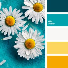 Great collection of Contrasting Palettes with different shades. Color ideas for home, bedroom, kitchen, wall, living room, bathroom, wedding decoration. | Page 37 of 101