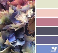 { flora spectrum } image via: @74larali                                                                                                                                                     More