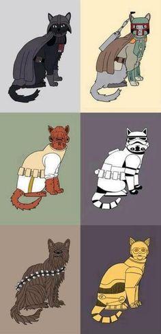 Cat Wars #StarWars