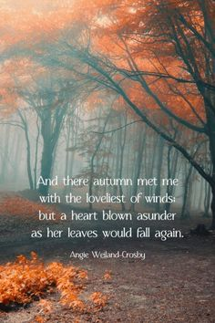 "Beautiful Autumn & Fall Quotes | Fall Poetry | Autumn Love Quotes | Nature photography of a golden fall forest | ""And there autumn met me with the loveliest of wind; but a heart torn asunder as her leaves would fall again."" Angie Weiland-Crosby #quotes #fall quotes #autumnquotes #fall #poetry #naturephotography #moody #gold #forest #blogging #autumn #soul #naturelovers #creativity #wellbeing #angieweilandcrosby #momsoulsoothers Nature Quotes, Fall Quotes, Fall Season Quotes, Autumn Quotes Inspirational, Forest Quotes, Time Quotes, Quotes Quotes, Qoutes, Autumn Cozy"
