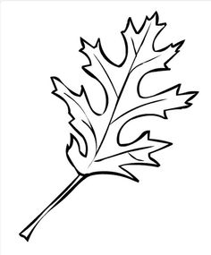 ... about outono on Pinterest | Leaf template, Fall leaves and Picasa