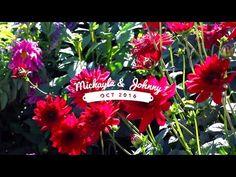 MICKAYLA + JOHNNY || Logan Temple . Utah & Idaho Wedding - YouTube