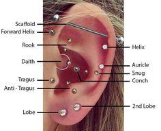 Top Ear Piercings
