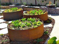 Steel Garden Beds Incredible Raised Garden Bed Galvanized Steel ...