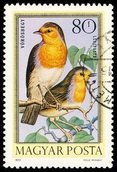 https://flic.kr/p/791B4Y | stamp hungary 1973 Rotkehlchen Erithacus rubecula