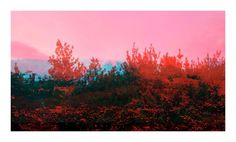 Buy Red landscape III, Colour photograph (Giclée) by ART GALLERY Le Beuan Bénic on Artfinder. Discover thousands of other original paintings, prints, sculptures and photography from independent artists.