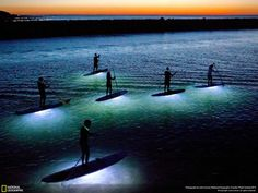 Stand up paddle boarders head out on a perfect full moon, windless evening in late September at Sesuit Harbor on Cape Cod. Waterproof LED lights are attached to the bottom of the boards, illuminating the water below which meant the paddlers could see fish passing by.