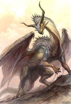 Drache ~Dragon