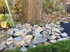 2016 - roughly laid leftover stone for path