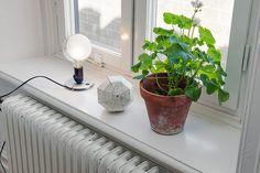 Fönster Vase, Windows, Lighting, Inspiration, Decoration, Home Decor, Homemade Home Decor, Biblical Inspiration, Decorating