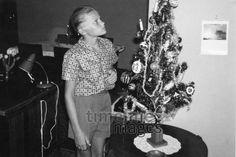 Boy Peeps at a Christmas Tree Shamrock / Timeline Images # … - Christmas Ideas Christmas Tree, Black Christmas, Christmas Images, Christmas Ideas, Timeline Images, Christmas Traditions, Peeps, Traditional, Black And White