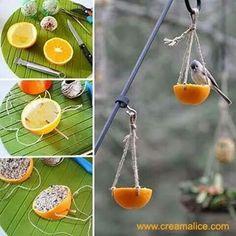 diy-manger-birds-orange-homemade Source by Garden Crafts, Garden Art, Bird Crafts, Diy For Kids, Crafts For Kids, Bird Feeder Craft, Homemade Bird Feeders, Bird Aviary, Summer Crafts
