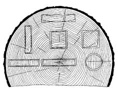 Characteristic shrinkage and distortion of flat, square, and round pieces as affected by direction of growth rings. Tangential shrinkage is about twice as great as radial.