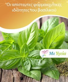 The Incredible Medicinal Properties of Basil This wonderful plant is called the holy herb not only because of its mythology, but because it seems to be a remedy for everything. Spice Things Up, Things To Come, Healthy Herbs, Italian Cooking, Natural Home Remedies, Wonderful Things, Allergies, Gardening Tips, Basil
