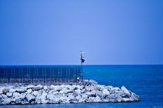 Molo Cartagine