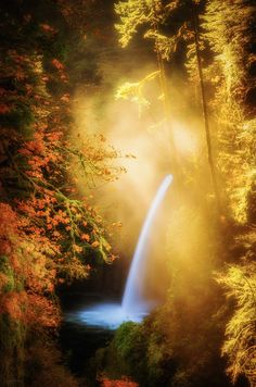 """Metlako Falls in the Columbia Gorge, on the awesome Eagle Creek Trail, Oregon ~  """"Such a magical place in the morning, especially in the fall!"""""""