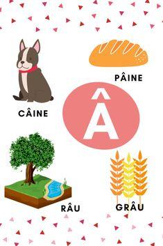 Planșe cu literele alfabetului – GOGU Learning The Alphabet, Educational Activities, 4 Kids, Kids Rugs, School, Fun, Cards, Decor, Montessori