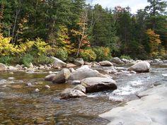 Kangamangus river, NH
