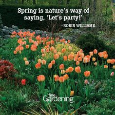 Ten of the best spring time quotes! -  Quotes about flowers and gardening -  From Fine Gardening.com