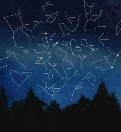 A little constellation inspiration