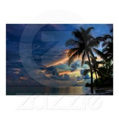Sunset in Paradise poster - brighten your room with Incredible colors of sunset in the Bahamas with a palm tree in the foreground