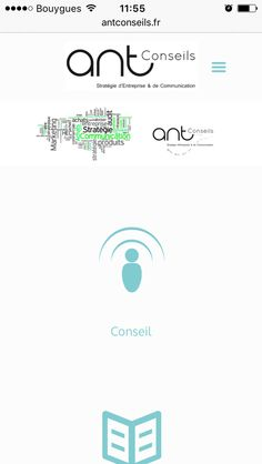 http://www.antconseils.fr/ site 100% responsive design