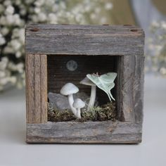 Holiday Crafts, Fun Crafts, Paper Crafts, Altered Tins, Altered Art, Ceramic Workshop, Shadow Box Art, Mushroom Art, Paper Clay