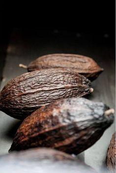 Cabosses - La Manufacture du Chocolat d'Alain Ducasse, 40 rue de La Roquette, Paris (11e arr.)