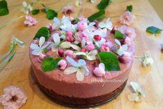 Raw Vegan Chocolate & Strawberry Cheesecake