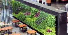 Living Green Wall at the Embassy Suites Chicago Lakefront Hotel.