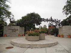 lincoln park zoo - Google Search