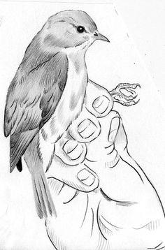 Dibujos de animales a lapiz o carboncillo - Página 3 1eb887c7c09e7dfd9bd1a97c14d4b71b--dora