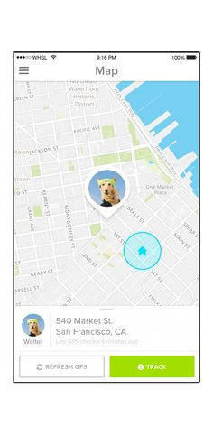 dog tracking app iphone advert