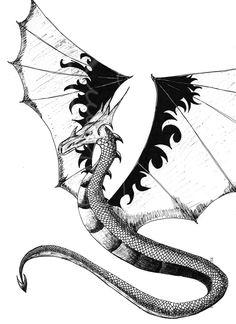 Draco americanus tex - Cerca con Google Draco, Google, Art, Art Background, Dragonair, Kunst, Performing Arts, Art Education Resources, Artworks
