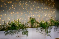 A 'Wilde' & 'Natural' long Top Table design at The Matara Centre based on 3 kiln dried tree roots. A Wilde Bunch design to create dramatic silhouettes of fern against the tablecloth and the arrangements against the illuminated wall Flower Wall Wedding, Backdrop Wedding, Flower Wall Decor, Wedding Flowers, Dry Tree, Tree Roots, Centre Pieces, Fern, Silhouettes