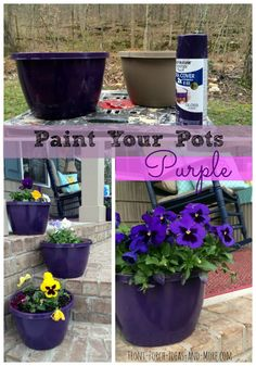 TIred of hum drum pots that plants come in from the store? Simple solution. Spray paint them. We painted ours purple for the spring and wow, they make the pansies just pop!  www.Front-Porch-Ideas-and-More.com