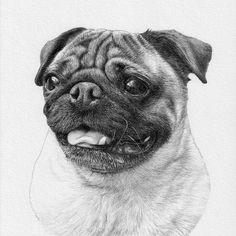 Custom portrait, baby girl or family pencil portrait drawing from a photo. - Custom portrait baby girl or family pencil portrait drawing