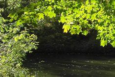 green river 3