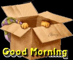 Good Morning cute quote puppy good morning greeting morning quote morning gif