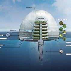 Seawater greenhouse agriculture with Ocean Distiller Farm Futuristic City, Futuristic Design, Futuristic Architecture, Sustainable Architecture, Floating Architecture, Underwater City, Future Buildings, Home Greenhouse, Fish Farming