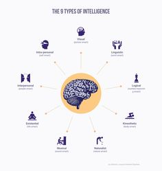 The 9 Types Of Intelligence Infographic from Adioma samples gallery