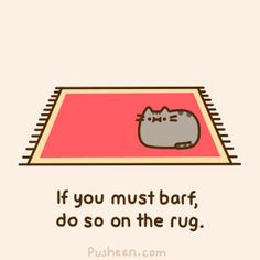 Pusheen the cat -- our cats do this!