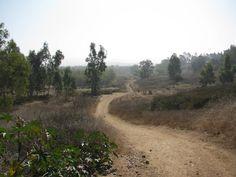 Short Loop Trail Santiago Oaks to Irvine Park