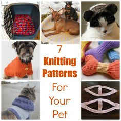 7 Knitting Patterns For Your Pet
