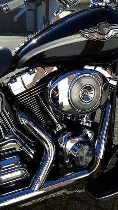 Harley Davidson heritage softail anniversary 2003. I love this bike! #harleydavidsonsportsteriron #harleydavidsonsoftail