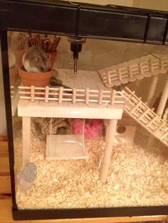 Hamster Cage - DIY aquarium conversion. Russian Campbell's Dwarf Hamster #SophieLittle