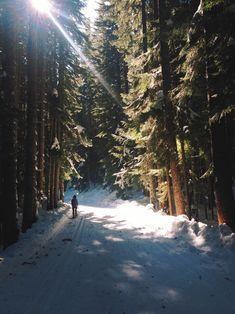 Follow Your Path| héérlijke frisse boswandeling - blauwe lucht - hemelse zonneschijn - krakende sneeuw - helemaal warm van het stappen - hmm.. ik hou van de winter - -  ski.